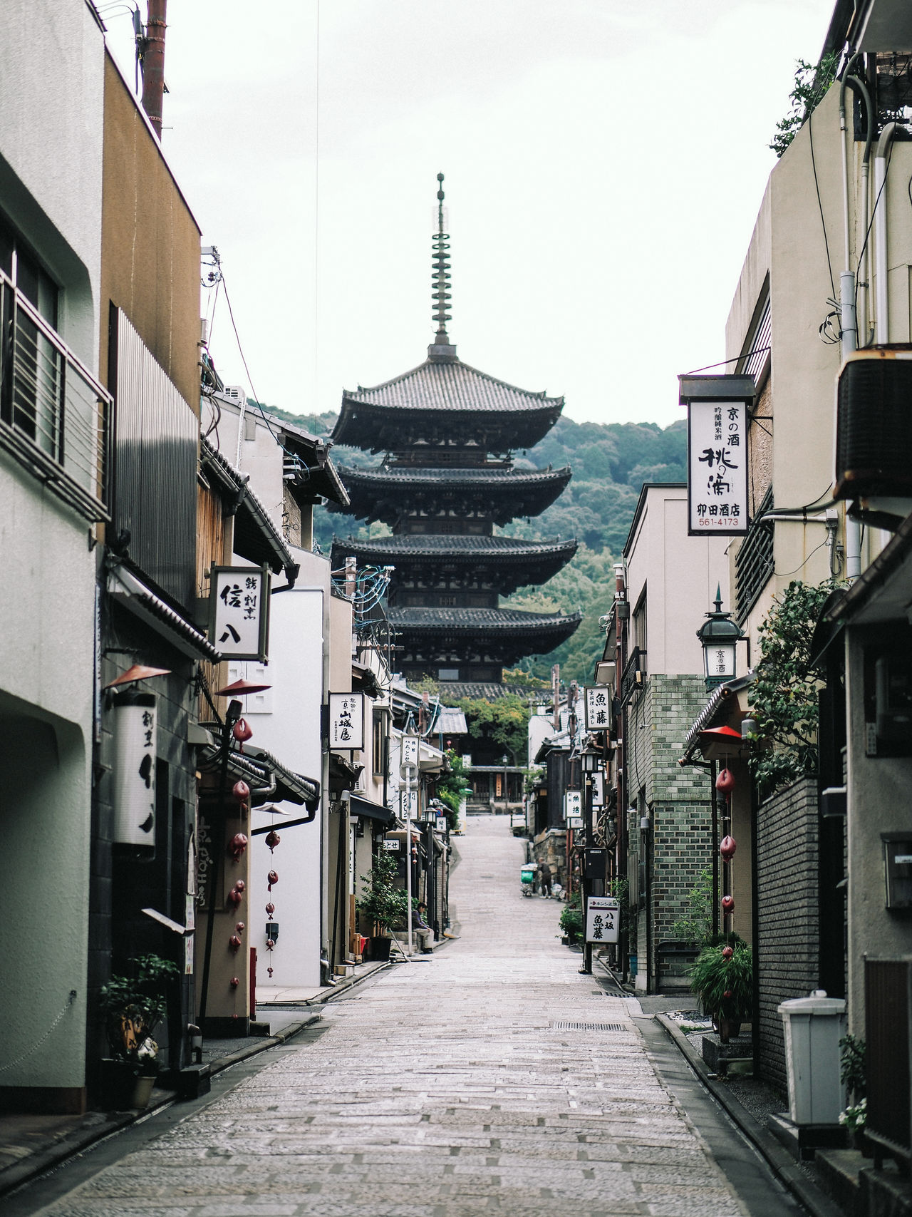 Kyoto urban landscape Architecture Building Exterior Built Structure Day East Asia Japan Kyoto City Kyoto Prefecture No People Oriental Outdoors Pagoda Sky Spirituality Temple - Building The Way Forward Tourism Tourist Attraction  Traditional Culture Trees Urban Road Vertical Walkway
