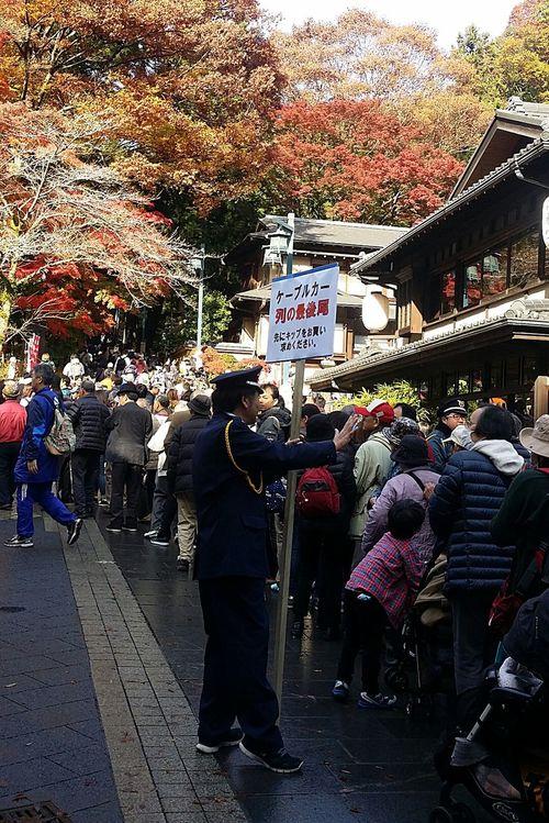 Crowd Control Sunny Day Sunday Takaocrowd Takaoautumn Takaoautumn2016 Takaonature Autumnleavesviewing Japan Japannature Japanautumn2016
