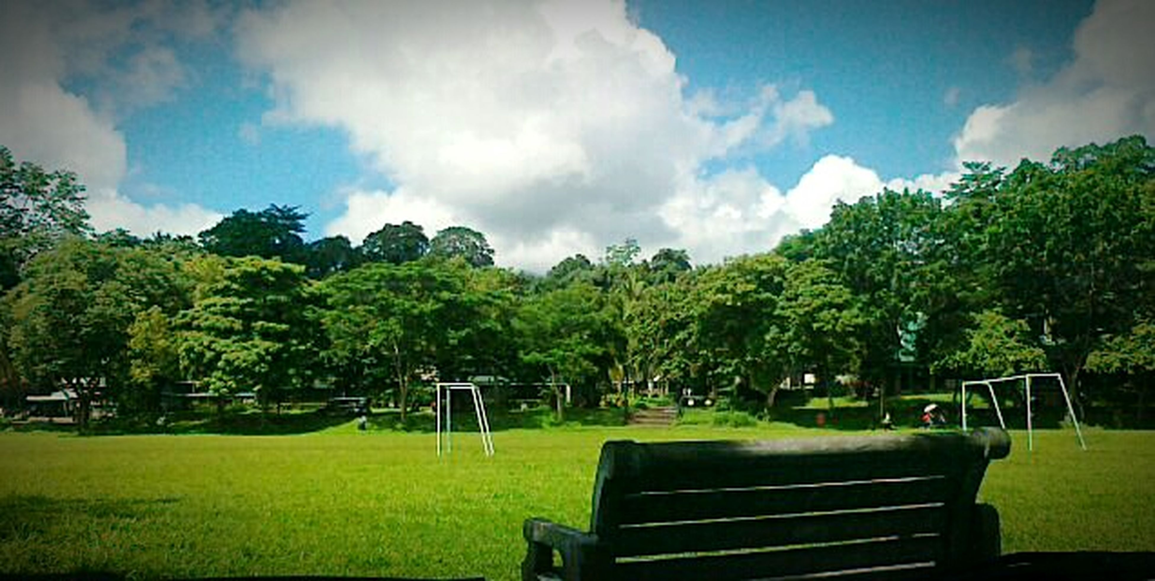 tree, grass, sky, green color, bench, cloud - sky, park - man made space, tranquility, cloud, nature, tranquil scene, relaxation, growth, beauty in nature, scenics, lawn, park, field, park bench, landscape