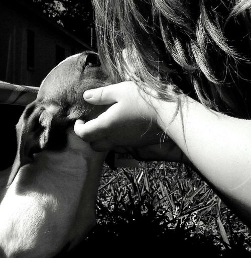 A Girl And Her Dog Puppy Love ❤ In The Grass So Sweet ♥ Up Close & Personal Puppy Power Lovelovelove So Beautiful ♥♥ Beautful Moments In Life