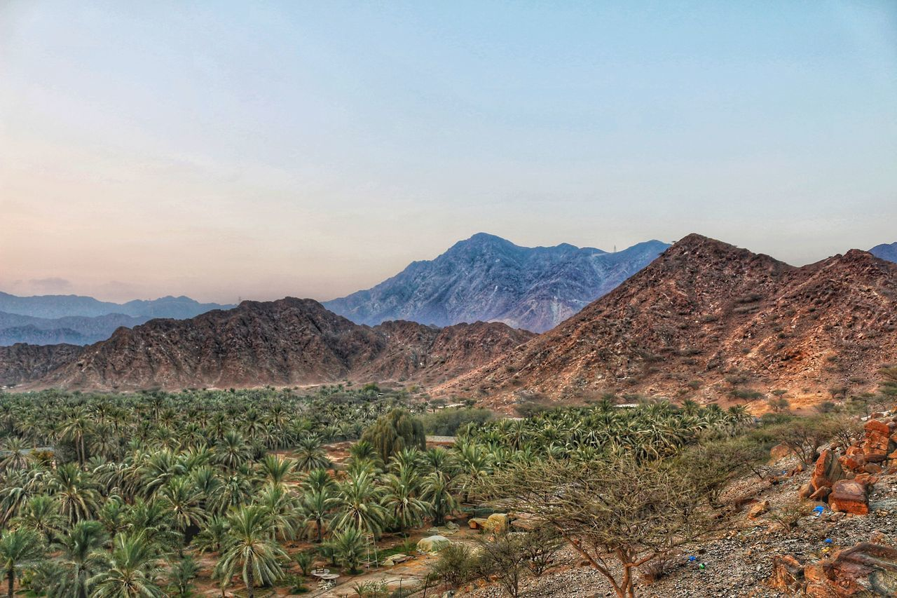 mountain, nature, beauty in nature, mountain range, scenics, tranquil scene, tranquility, landscape, no people, plant, outdoors, day, arid climate, desert, sky, clear sky