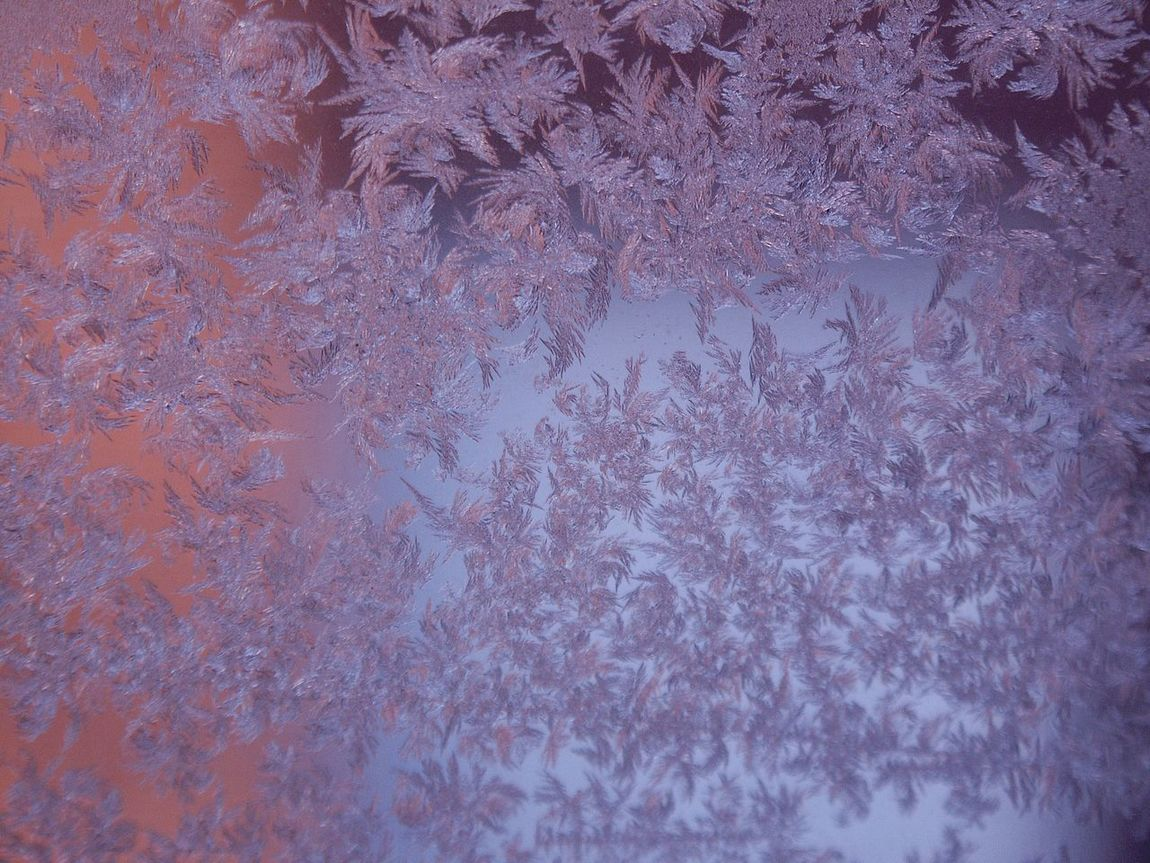 Abstarct ArtWork Close-up Cold Weather Colored Frost Colors Creative Cristal Formation Frost Full Frame Ice Looking Outside Natural Beauty Natural Shapes Nature No People Outdoors Rime Ice Unpredictable Creation Window Frost Winter Days