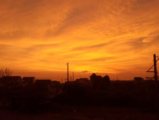 Cool Sunset Ever Beautiful Nature sunset on point💓
