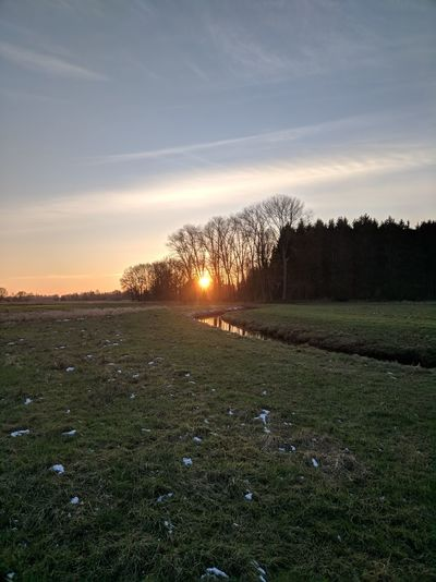 046/365 Sunset an der Bilsbek Photo365 Bilsbekblog Xiaomiography XiaomiMi5s Smartphoneography Nofilter Googlecamera Hdr+ Photooftheday Sorcerer86 Eyeemgermany Eyeemkummerfeld Sunset Grass Nature No People Outdoors Sky Day