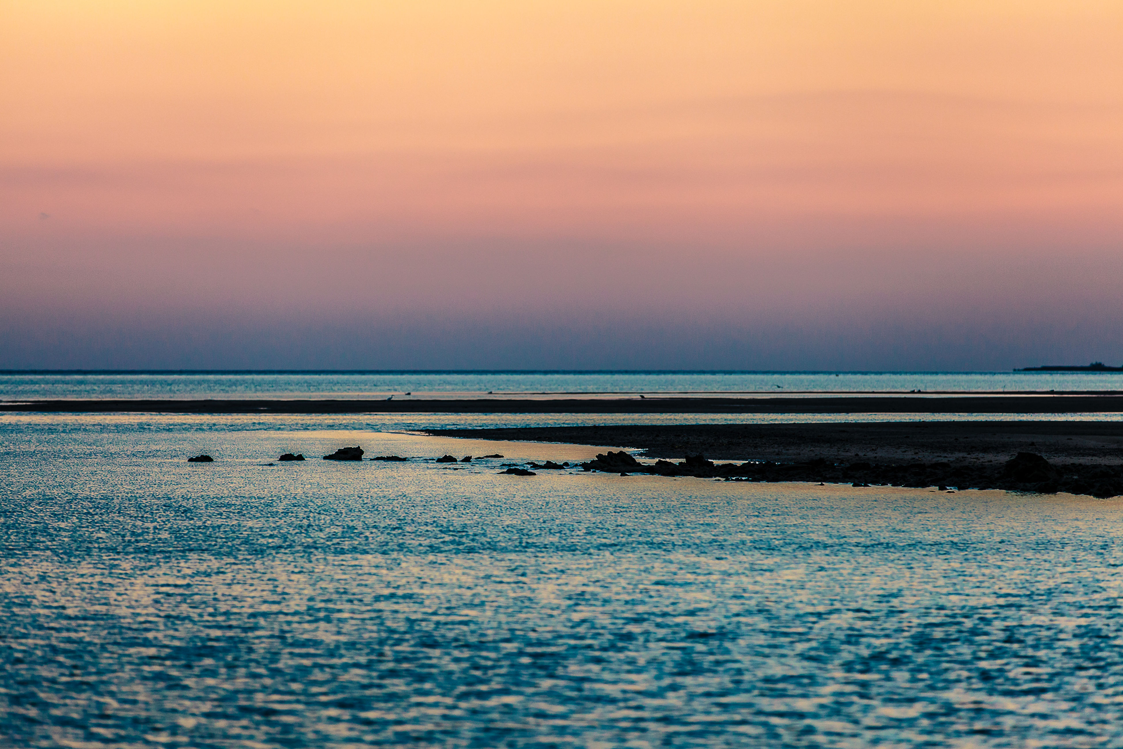 sea, horizon over water, water, sunset, sky, beauty in nature, nature, reflection, tranquility, scenics, beach, tranquil scene, no people, outdoors, day, animal themes