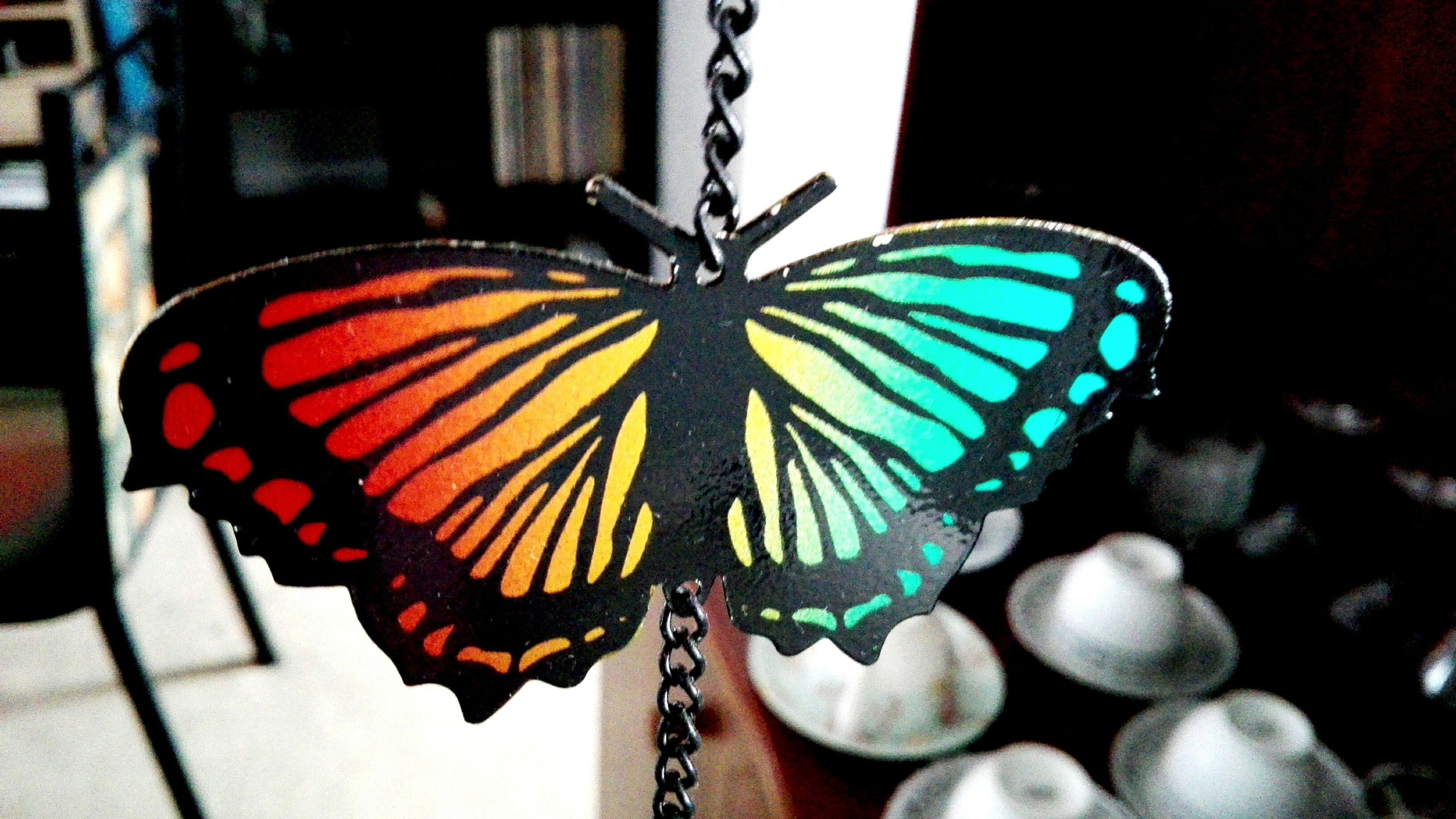 close-up, butterfly - insect, animal themes, focus on foreground, butterfly, animal markings, multi colored, no people