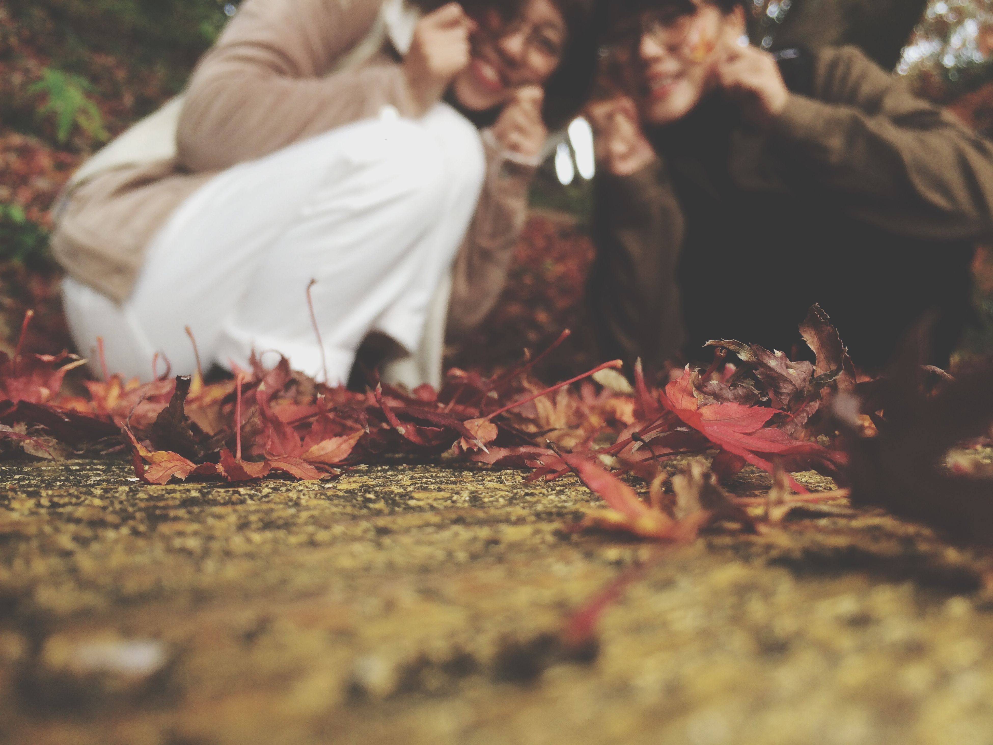 men, autumn, leaf, lifestyles, dry, selective focus, leisure activity, change, leaves, field, low section, outdoors, fallen, day, person, unrecognizable person, standing