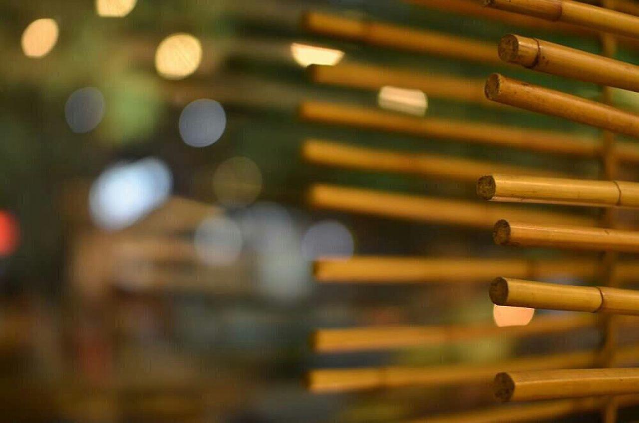 Bamboo Organic Indigenous
