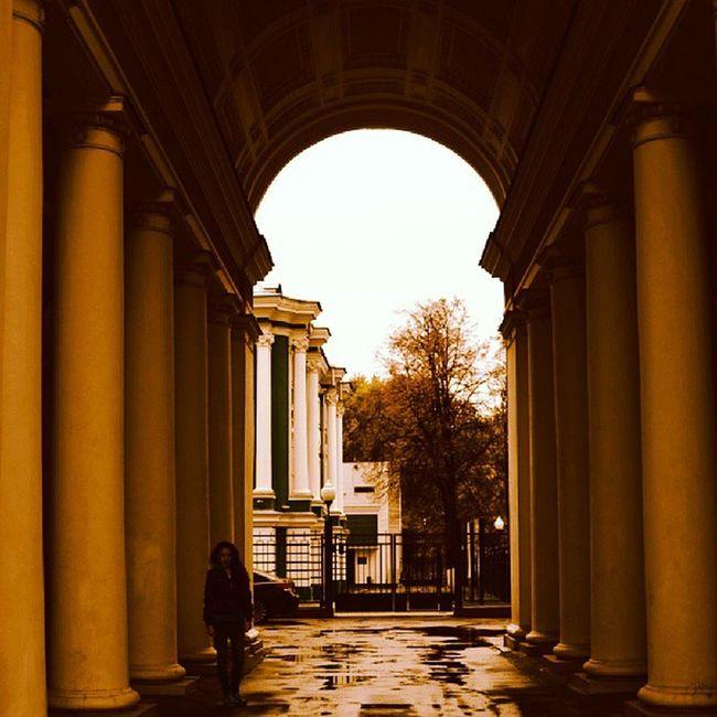 Voronezh врн Воронеж арка красиво october ann beauty arch