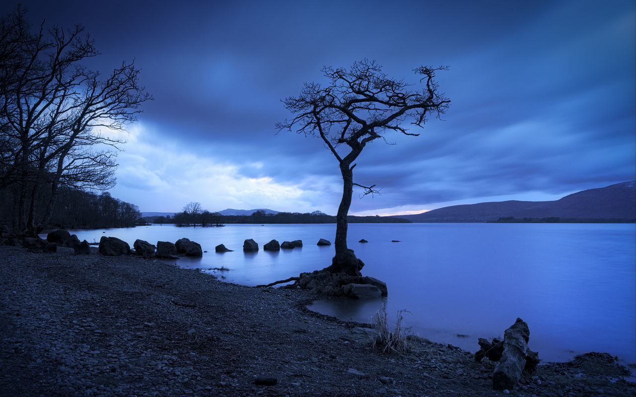 That Tree Bare Tree Beauty In Nature Blue Blue Hour Dusk Highlands Landscape Nature No People Outdoors PENTAX K-1 Scotland Sky Tranquility Tree Water