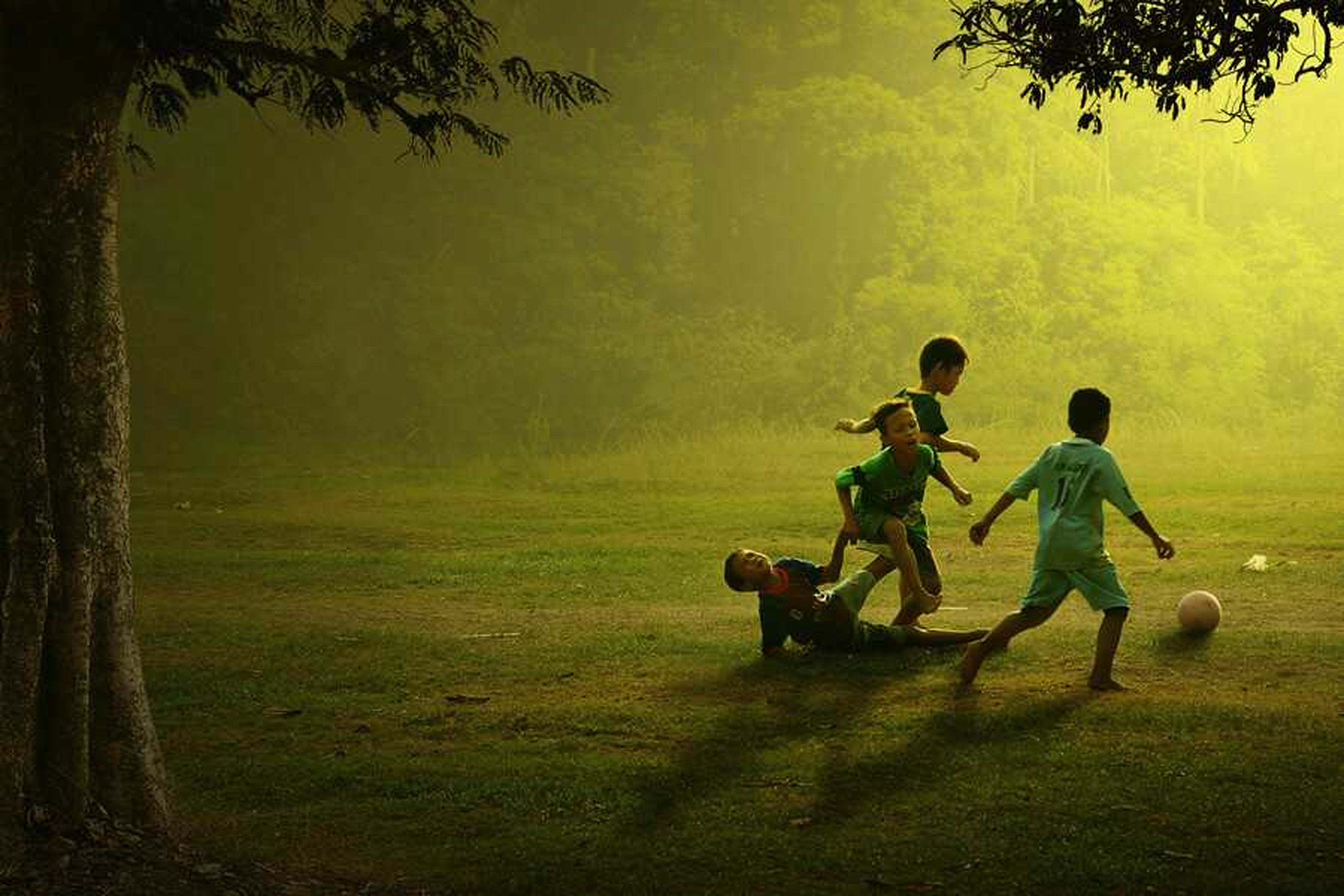 full length, lifestyles, leisure activity, childhood, boys, togetherness, bonding, men, girls, casual clothing, elementary age, love, grass, tree, family, field, children