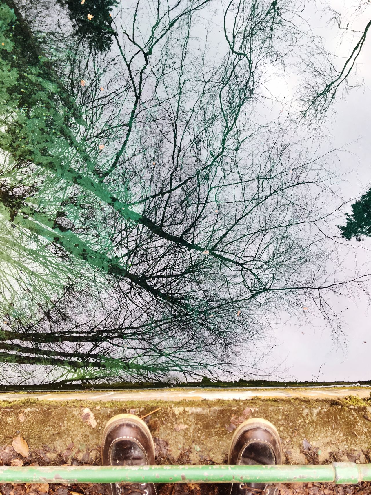 Tree Architecture Built Structure Nature Branch Beauty In Nature Bare Tree No People Day Outdoors Growth Building Exterior Scenics Sky Reflection Shoes Teufelsküche Bavaria