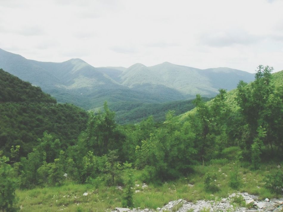 горы КавказскийХребет
