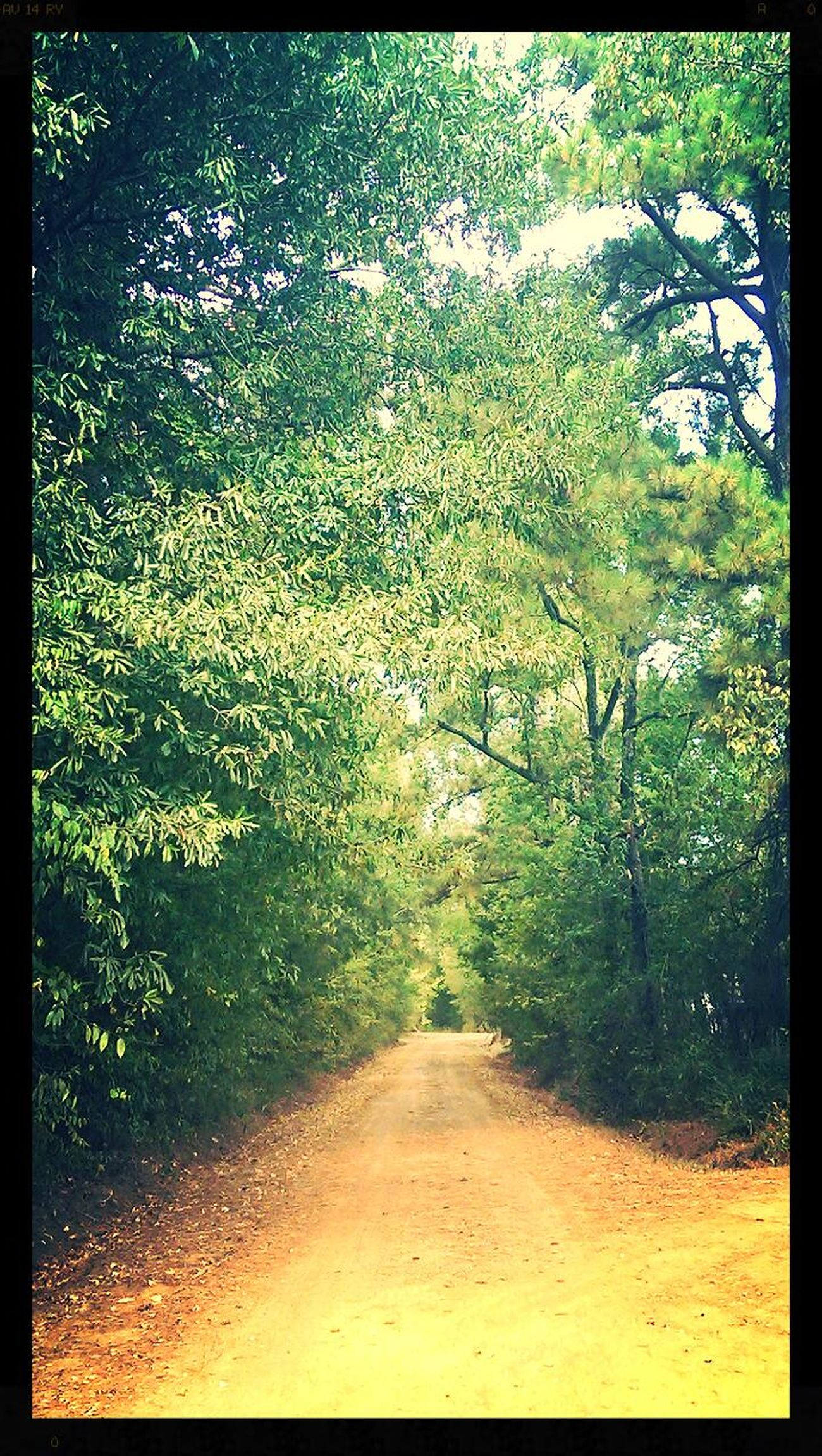 My dirt road. Dirt Road Dirtroads Myview Myview@myHome..