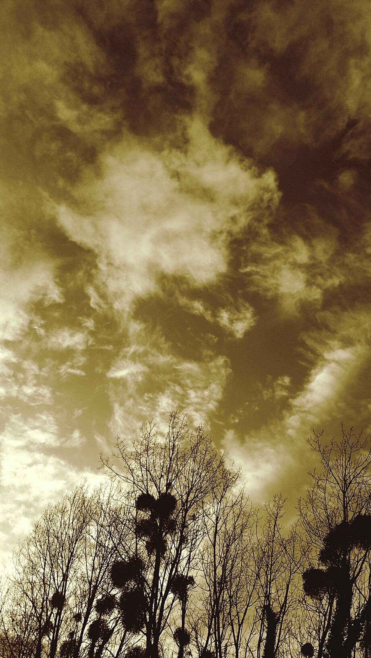 Nuages Clouds And Sky Arbres Campagne First Eyeem Photo RemiB 040116