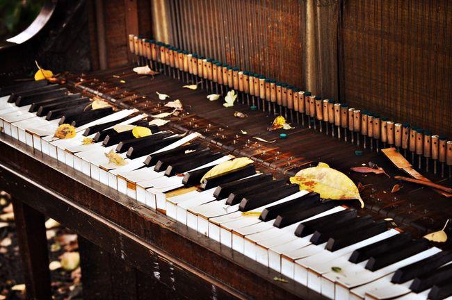 Piano Old Piano Eyemphotography Eyem Best Shots EyeEm Best Shots Eyem Gallery