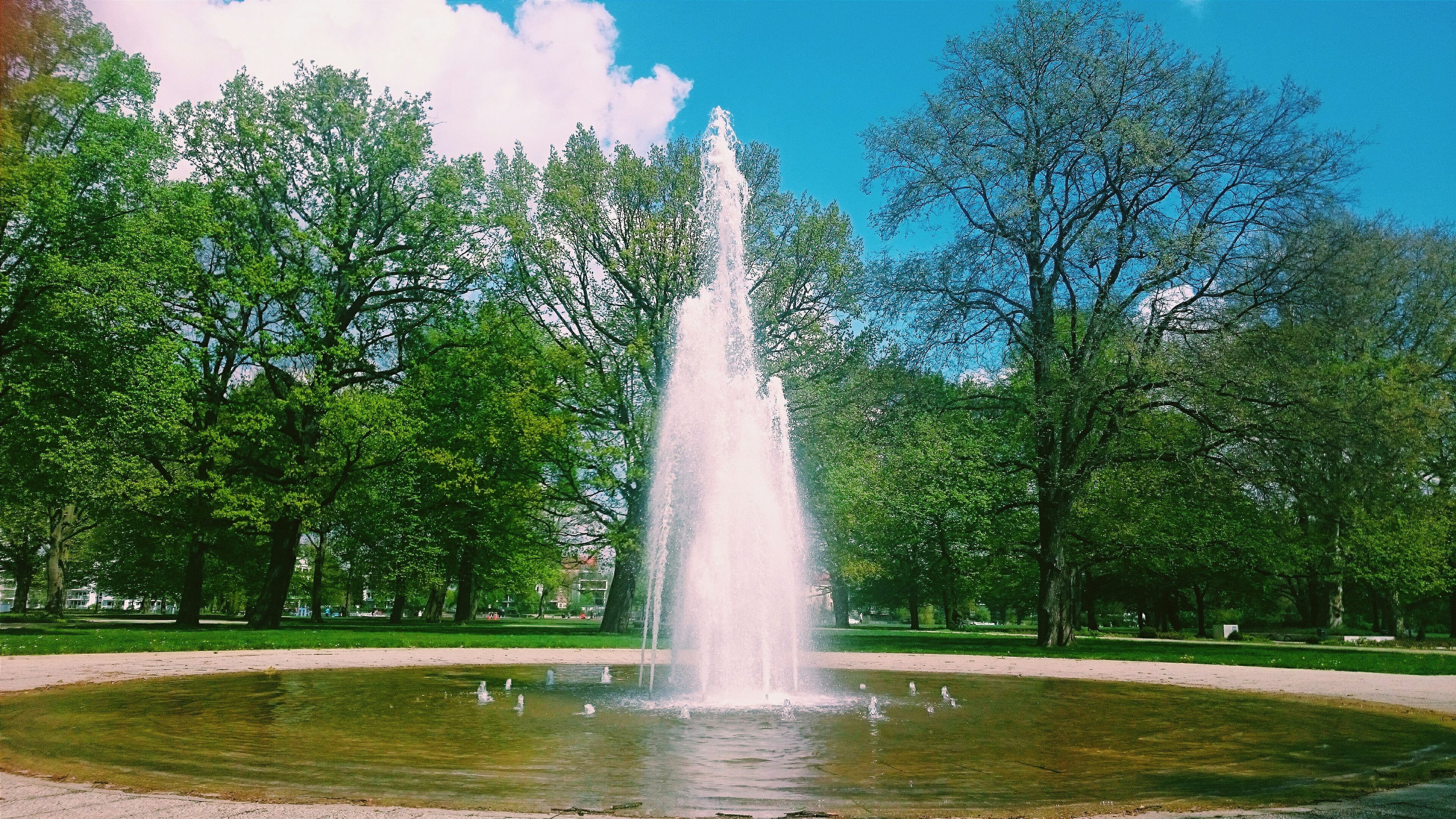 tree, fountain, park - man made space, water, grass, spraying, motion, growth, sculpture, blue, splashing, sky, statue, green color, nature, park, formal garden, sunlight, built structure, clear sky