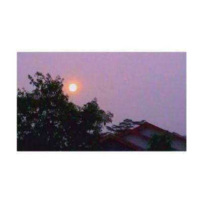 Lately the sun is so beautiful likr Bloodysun Sunrise