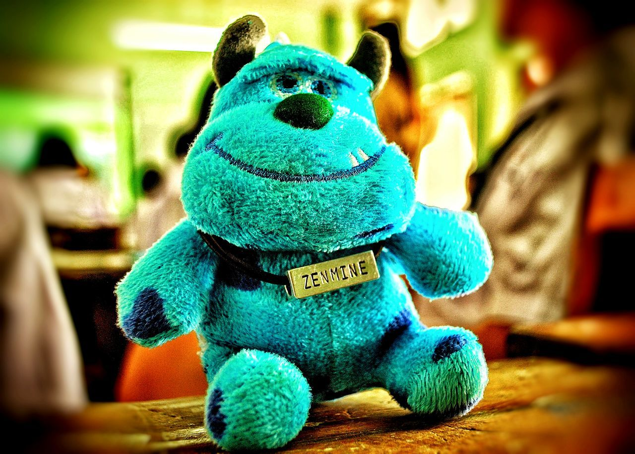 toy, indoors, animal representation, stuffed toy, text, childhood, no people, close-up, blue, teddy bear, day
