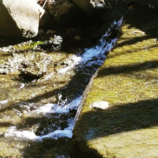 Nature Photography Woodland Stream Nature Beauty In Nature Water Over Rocks Taking Photos Nature Lover Nature Beauty Nature Makes Me Smile