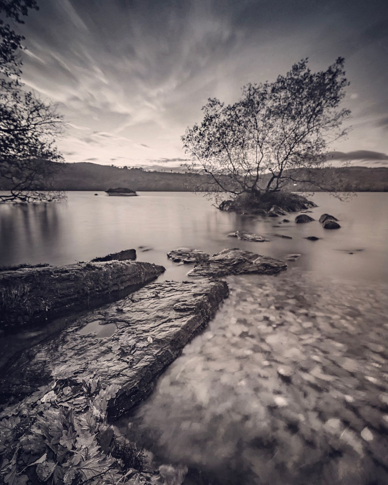 Tree Jetty Beauty In Nature Water Tranquil Scene Outdoors Bw Photography Blackandwhite Lake District Lake View Lonely Tree TreePorn Tree_collection  Cumbria Scenics Lakeside Long Exposure No People Nature Tree And Sky Great Britain