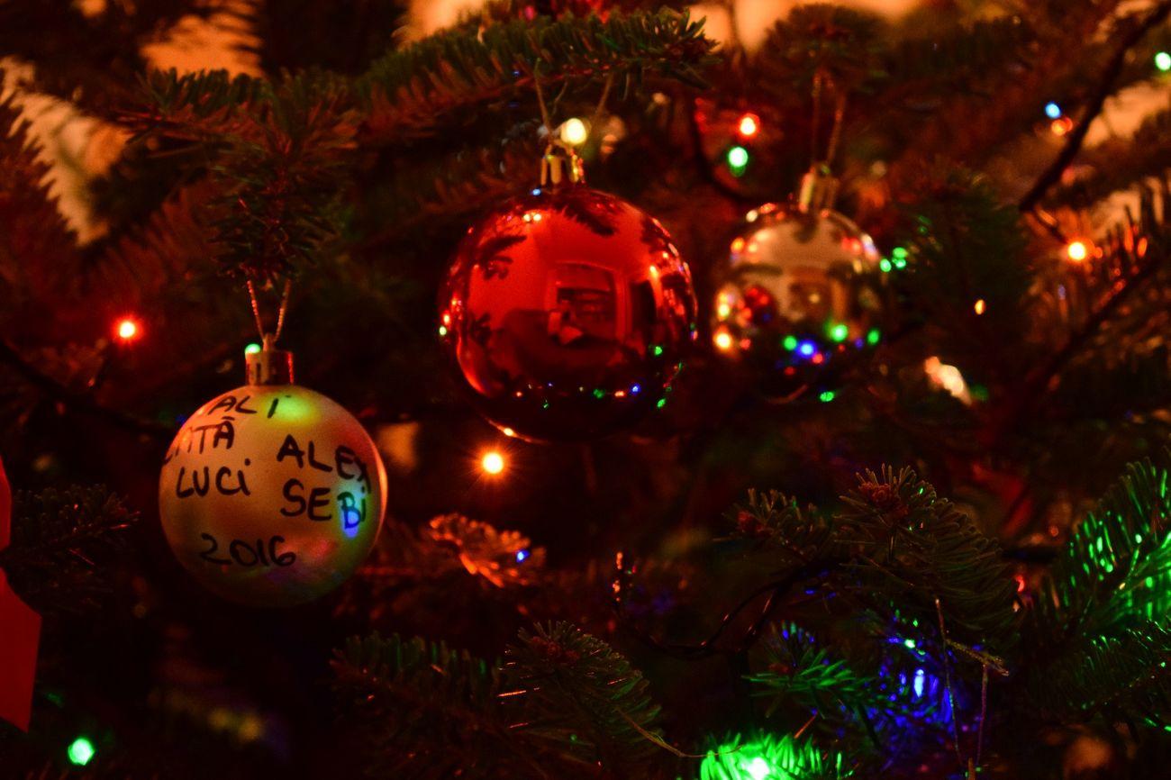 Christmas Christmas Tree Celebration Christmas Decoration Decoration Illuminated Christmas Ornament Tradition Christmas Lights Cristmas Time♥ Ready For Christmas! ! Lights Christmas Red CRISTMAS💙 Multi Colored Moments NIKON D5300