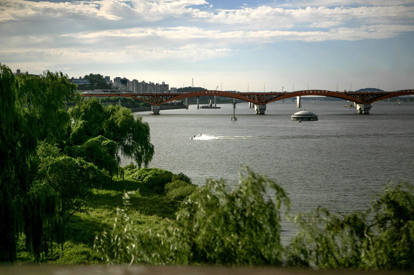 Architecture Bridge Bridge - Man Made Structure Building Exterior Built Structure Cloud Cloud - Sky Cloudy Connection Day Engineering Han River Han River Park Hangang Nature Outdoors River Sea Seongsandaegyo Sky Transportation Tree Water Water Ski Waterfront