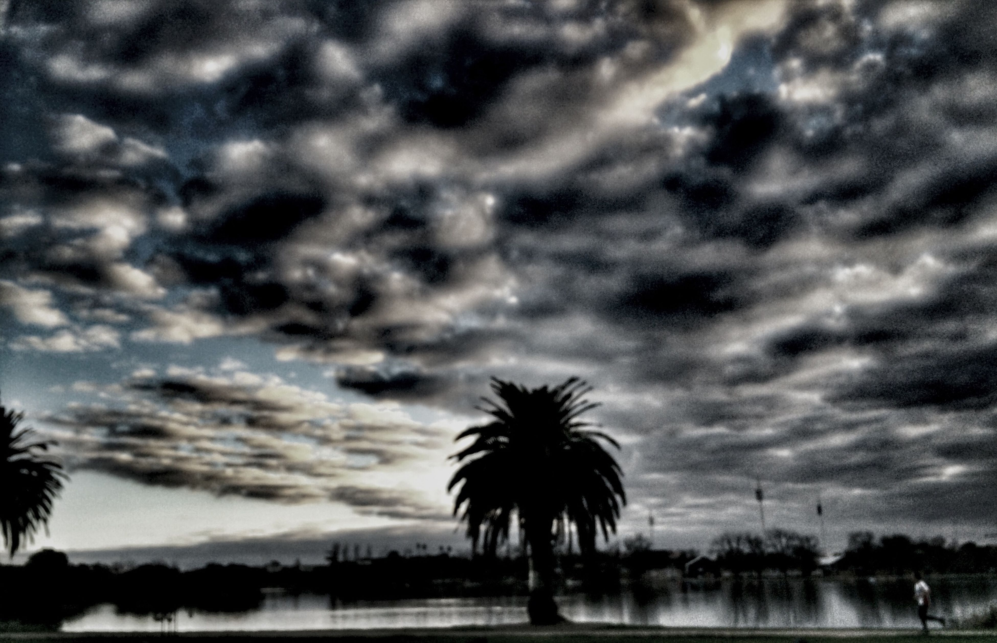 sky, water, cloud - sky, palm tree, silhouette, cloudy, reflection, tranquil scene, tree, tranquility, scenics, sunset, beauty in nature, weather, nature, lake, cloud, waterfront, overcast, dusk