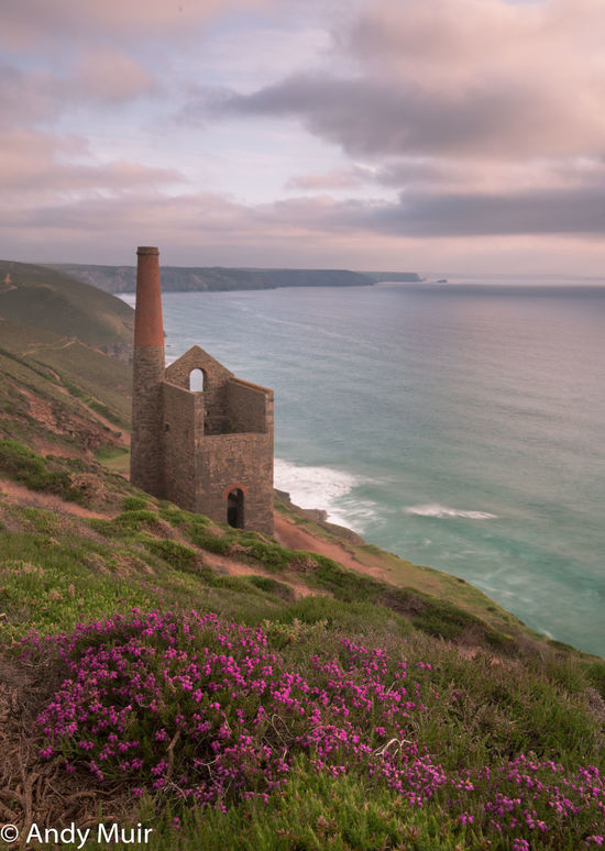 Sunseting over the beautiful turquoise sea with the majestic Towanroath engine house towering above the sloping cliffs adorned with the spring thrift Cloud - Sky Clouds And Sky Coast Coastal Life Cornish Coast Cornwall Flower History Horizon Over Water Landscape Outdoors Scenics Sea Sky Spring Flowers Sunset Tin Mines Cornwall Towanroath Engine House Tranquil Scene Water Wheal Coates Tin Mine First Eyeem Photo