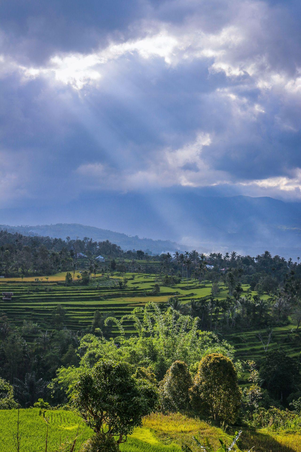 View of Nagari Dilam... Sky Day Rural Scene Nature Landscape Outdoors Photography Wonderfulindonesia