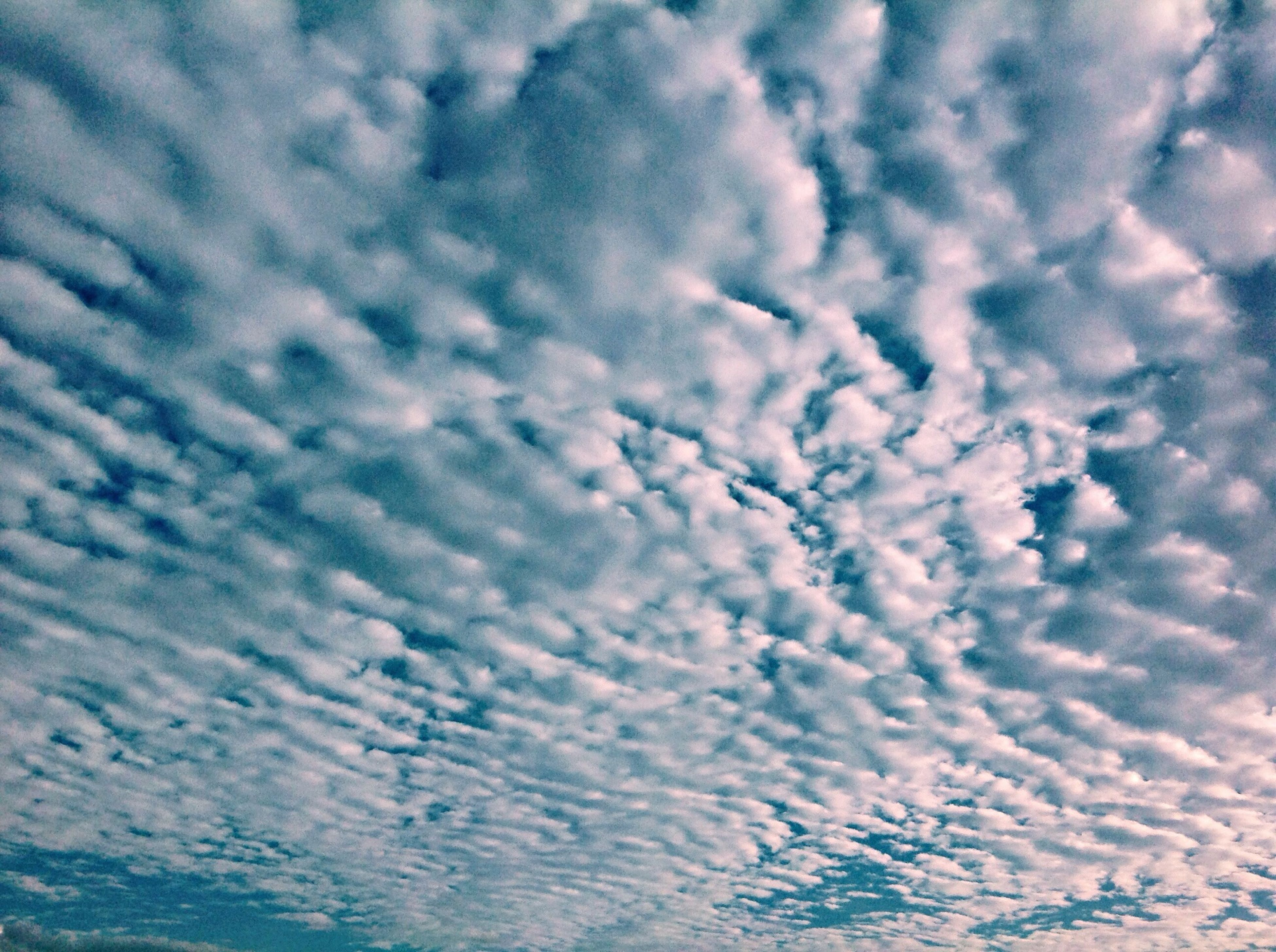 sky, cloud - sky, cloudy, tranquility, beauty in nature, tranquil scene, scenics, nature, cloud, backgrounds, low angle view, full frame, cloudscape, weather, idyllic, outdoors, no people, sky only, day, overcast