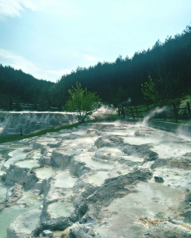 Landscape Hungary Salt Bath Nature Forest No People Hot Spring Freshness Beauty In Nature Spring 2017