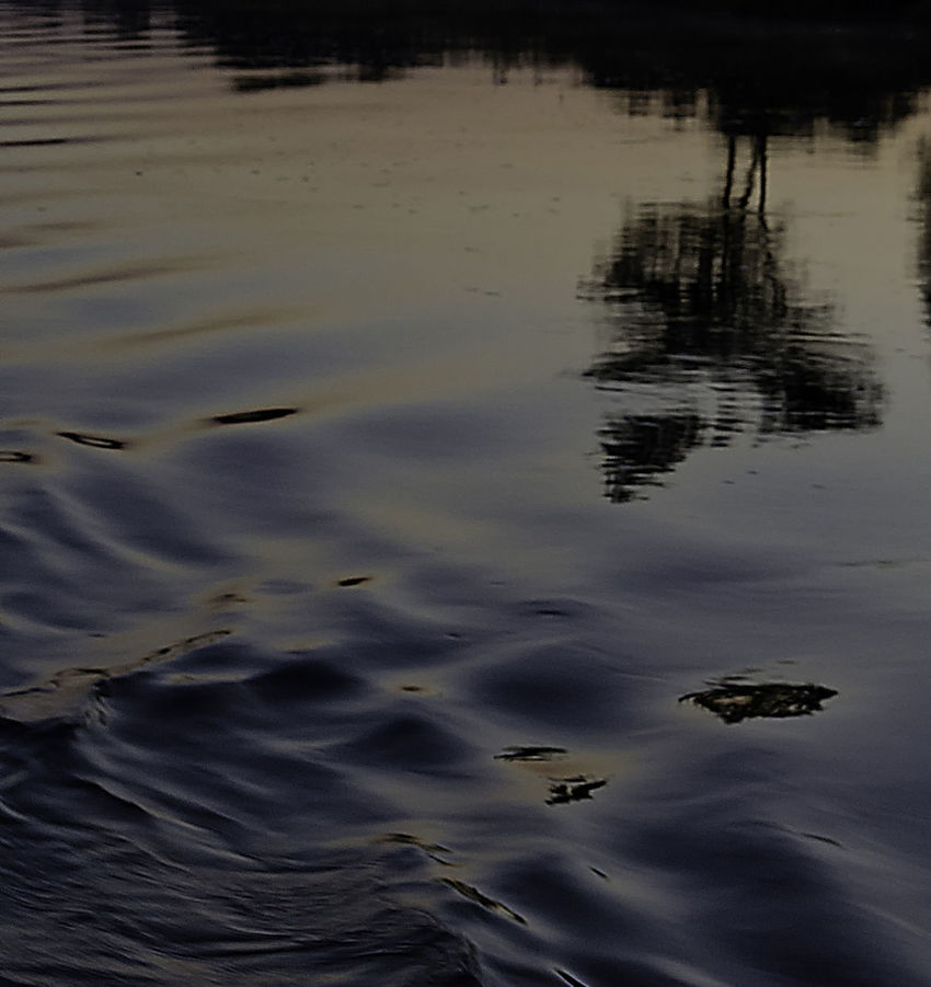 Water Reflections Close-up Evenning Nature No People Okavango River Outdoors Reflection River Sunset Water Water Ripples
