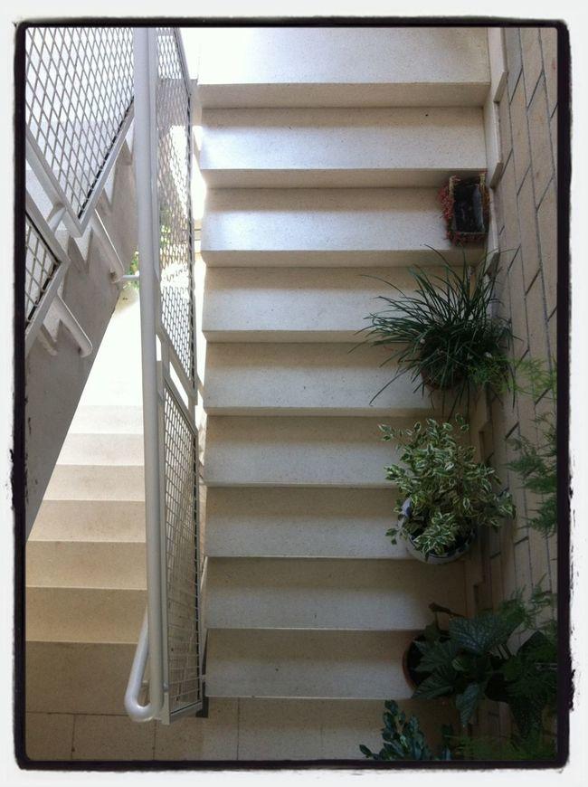 """Ya lo dice el refrán: """"la mona, aunque se vista de seda, mona se queda"""" Working Stairs PicFeeling Barreras Arquitectónicas"""