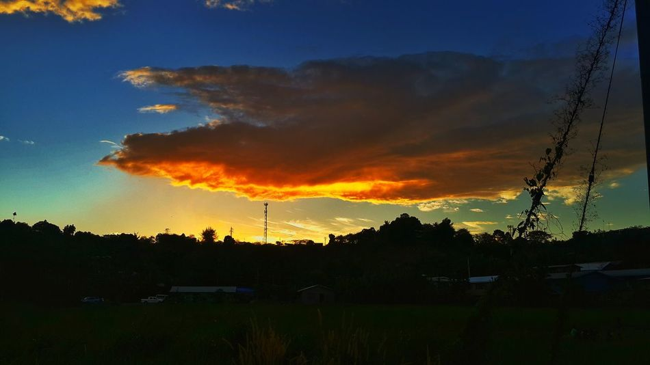 Sunet... Evening walk.. Nature Naturephotography Sky Dramatic Sky