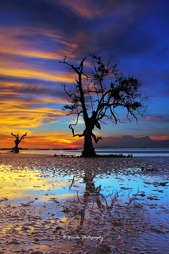 Alone Enjoying Life Exploreindonesia INDONESIA Cloudy And Sky Sunset EyeEm Indonesia My Life My Adventure Landscape Nature