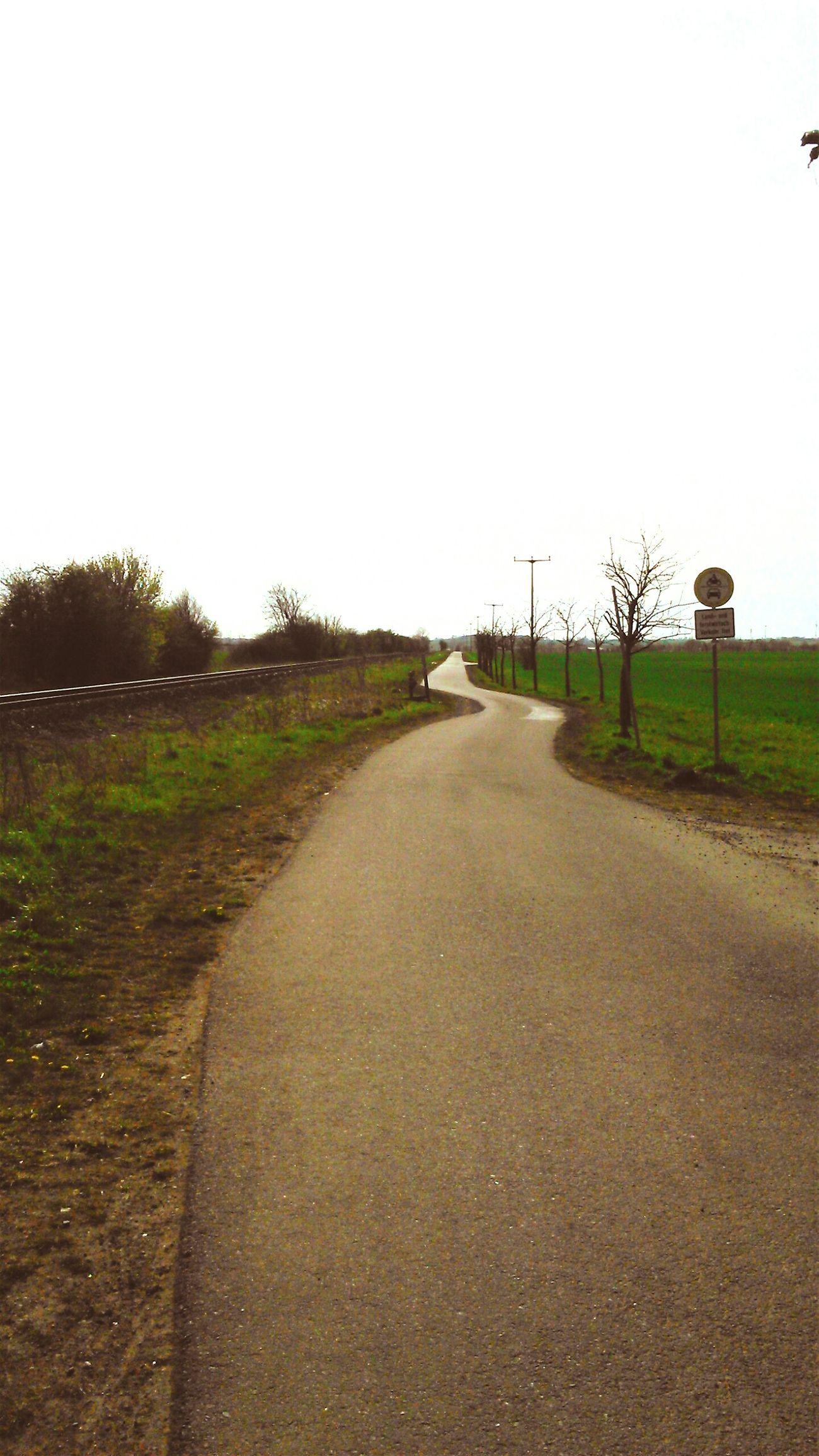 Landscape Barleben Magdeburg