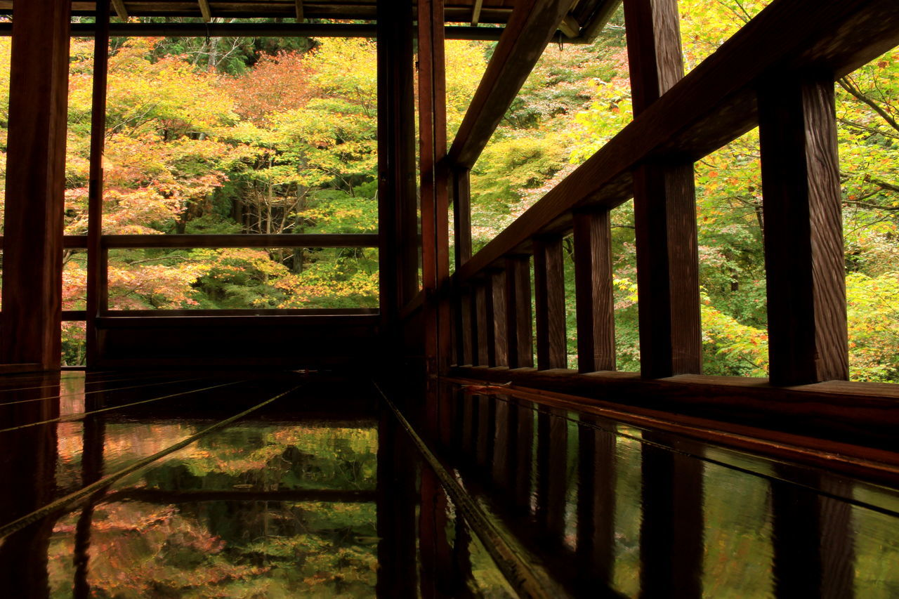 Colorful Fallcolors Kyoto Reflection もみじ 京都 反射 瑠璃光院 紅葉