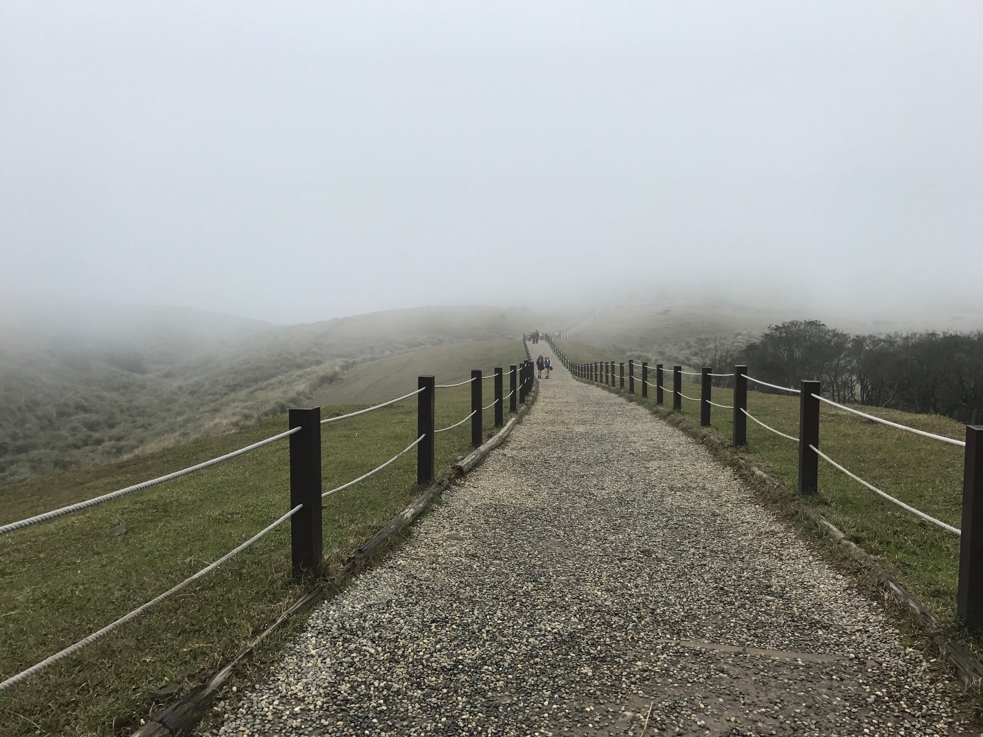 fence, nature, fog, tranquil scene, tranquility, railing, beauty in nature, landscape, scenics, day, mountain, outdoors, the way forward, grass, no people, picket fence, sky, mammal