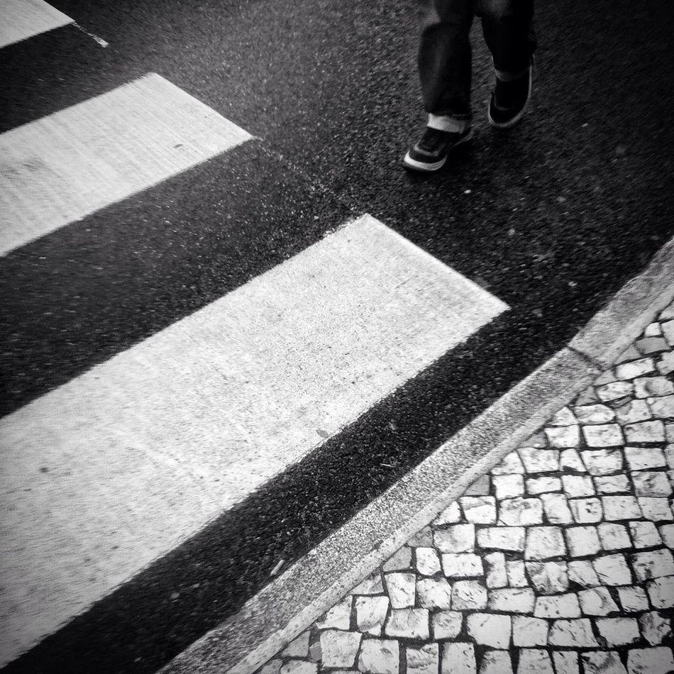 Beautiful stock photos of zebra, Crosswalk, Day, High Angle View, Human Leg