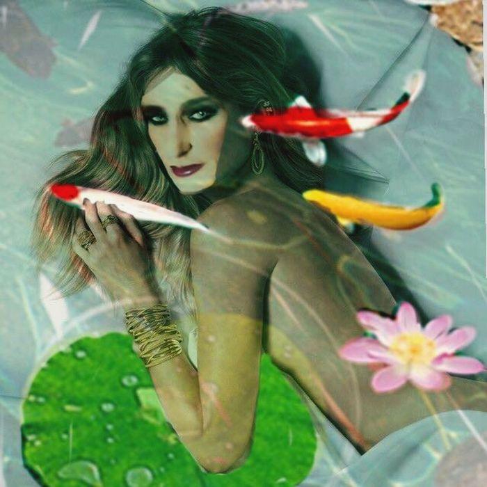 The Willow Album ArtWork