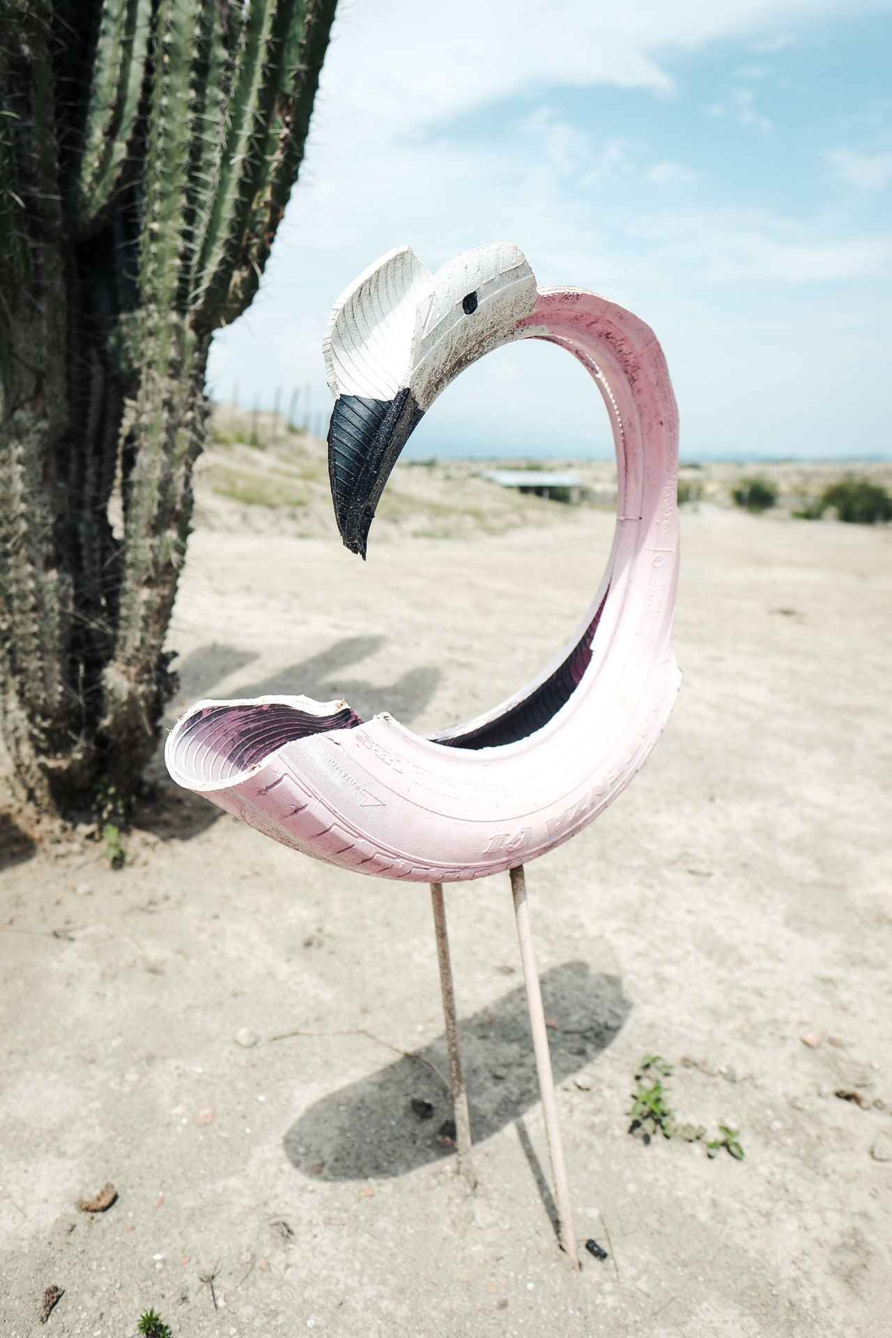 Art is everywhere Animal Themes Animal Wildlife Animals In The Wild Beak Beauty In Nature Bird Close-up Cradle To Cradle Day Flamingo Nature No People One Animal Outdoors Pelican Sky Swan Tire