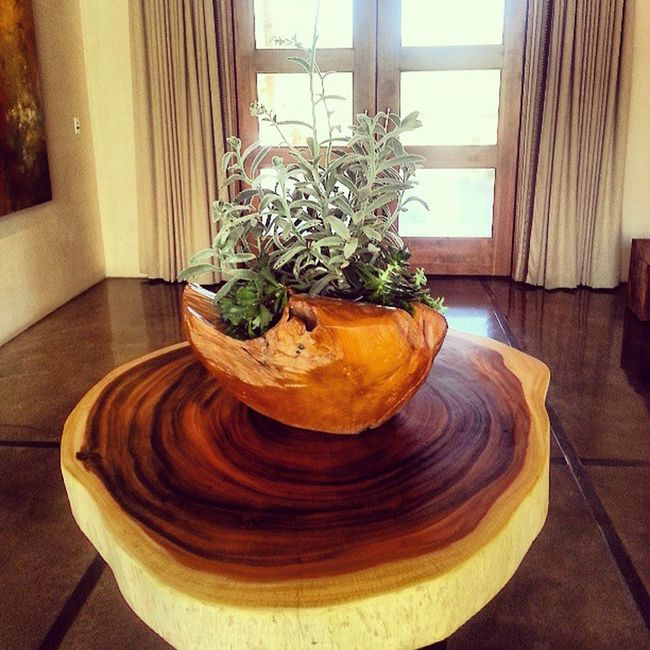 Fssantafe Fsfotog Coffeetable Lobby Sequoiagallery Succulents