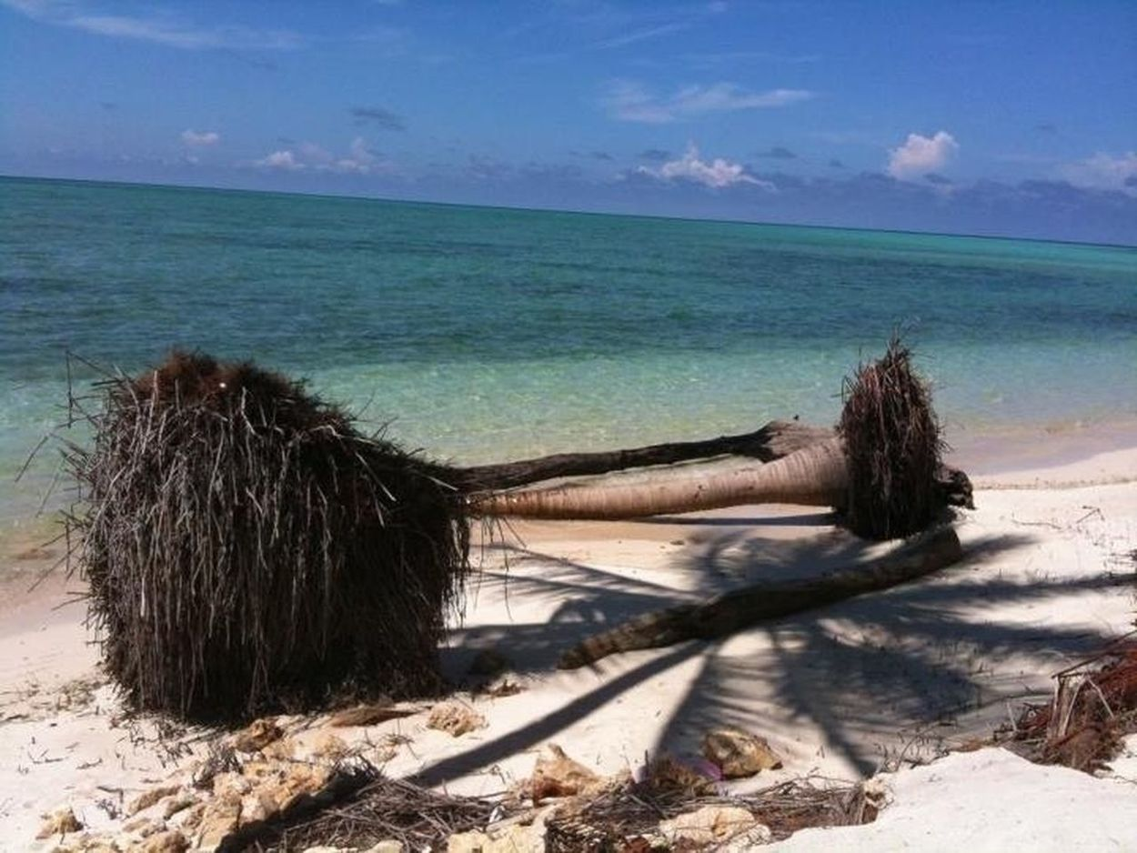 Beautiful Beach @Derawan Island