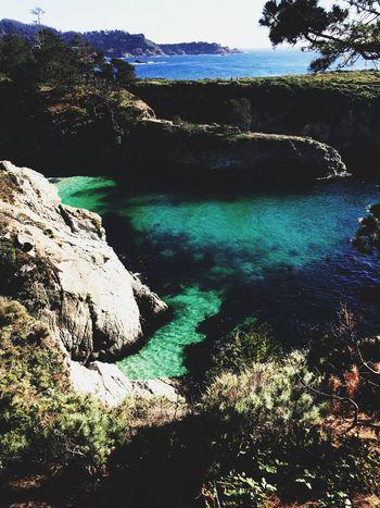 San Francisco Travel Beach Ocean Point Lobos Summer