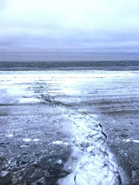 Alaska Beach Winter Ice Snow Ocean Outdoors