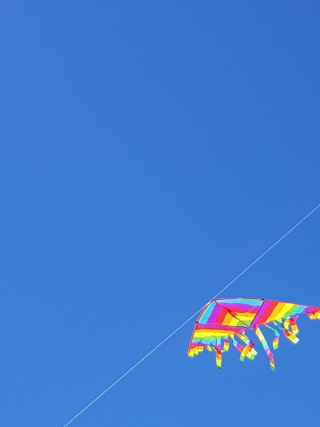 The good days Blue Multi Colored Day Outdoors No People Clear Sky Sky Low Angle View Flying Senigallia Senigallia Beach Senigalliainunclic Senigallia Italy Kite Flying Kite Kite - Toy Kites On The Beach