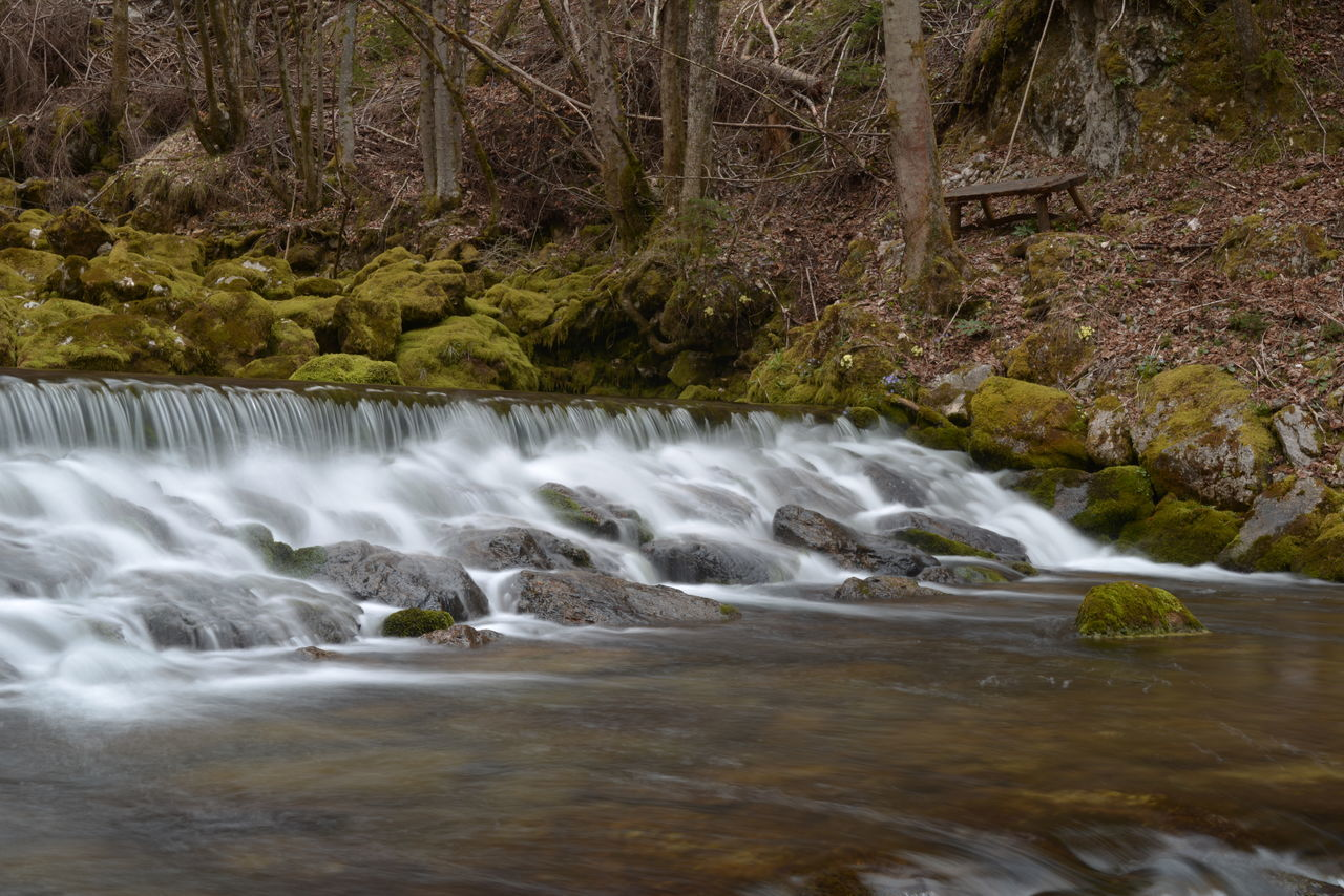 waterfall, motion, water, long exposure, nature, beauty in nature, forest, blurred motion, river, no people, scenics, outdoors, tranquil scene, tree, day