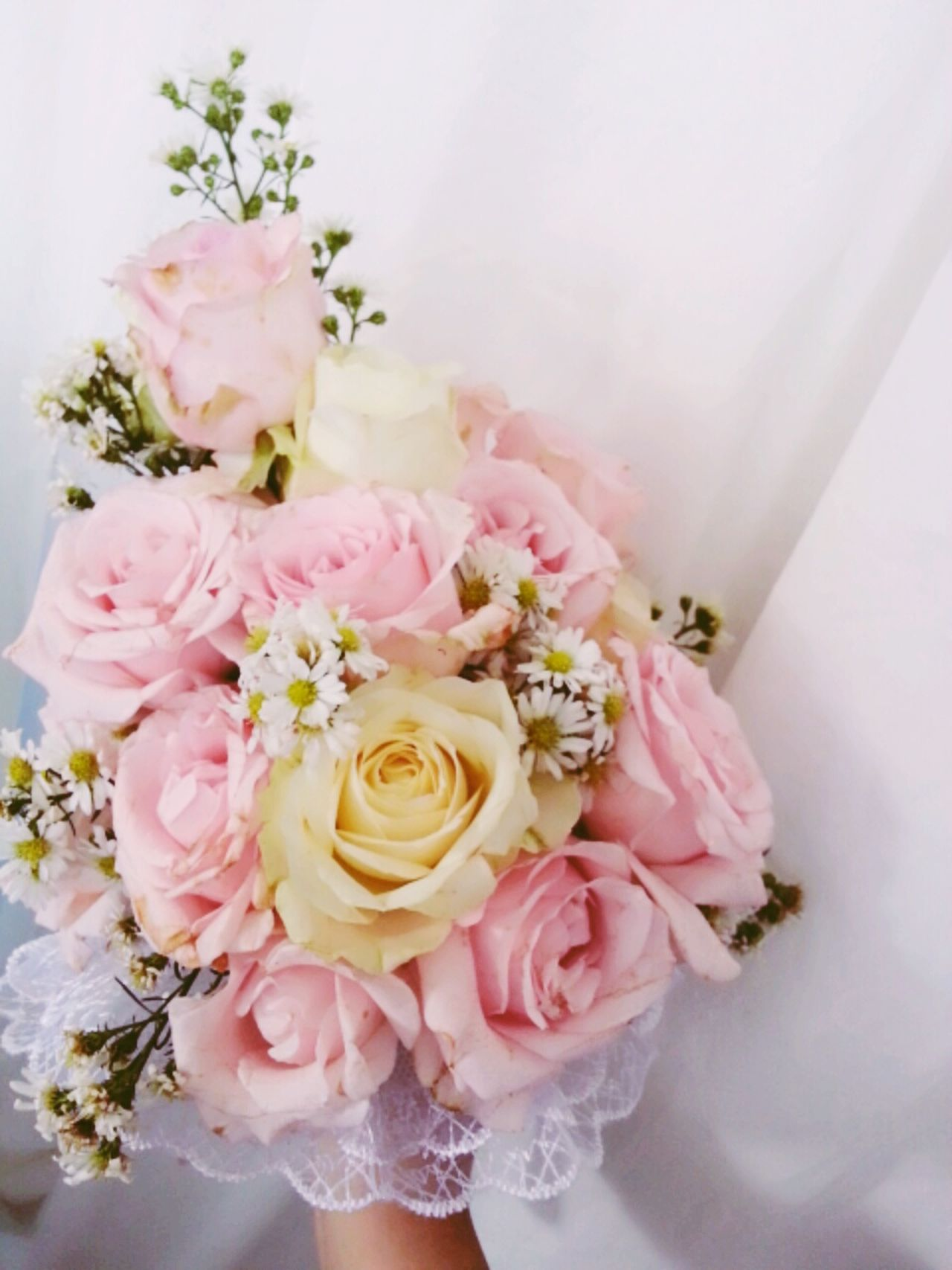 Beautiful stock photos of kiss, Beginnings, Bouquet, Bride, Bunch Of Flowers