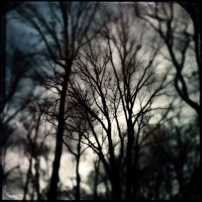 hipstamatic by StephDC